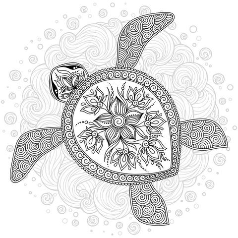 Turtle colouring-in sheet